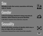 Gender, Sex and Sexuality: What's the Difference?